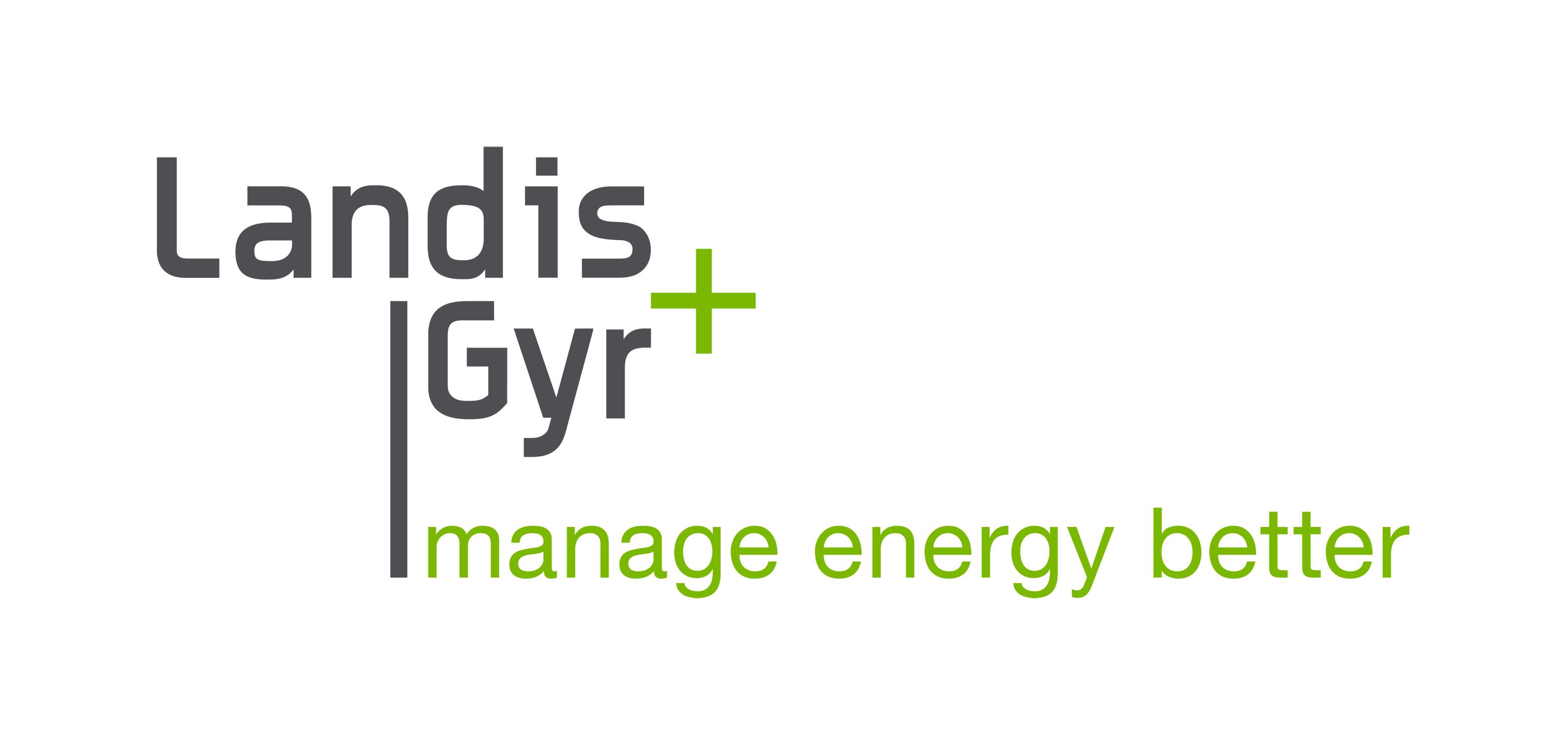 landis-gyr-user-interface-designer-global-sw-platform-team-jyvaskyla-smsol-3409553 logo
